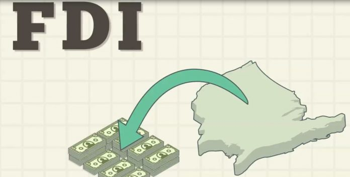 Who can make Foreign Direct investments?