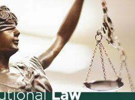 constitutional laws of india cases judgements