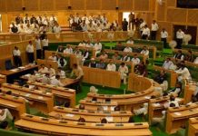 Unicameral and Bicameral Legislature – What is the Difference?