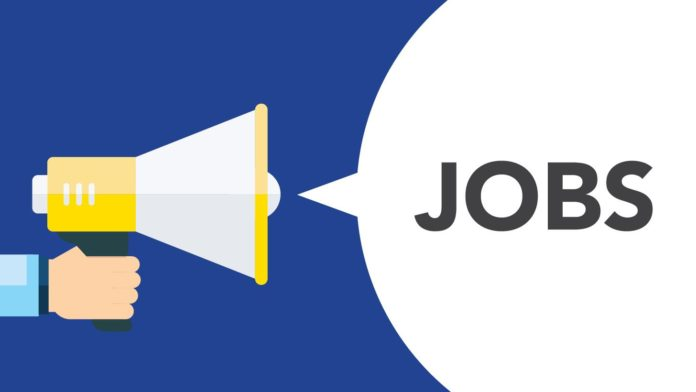 Advocate job vacancy for trademark services at Mukherjee Nagar, Delhi
