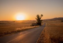 3 Common Causes of Auto Accidents in Rural Areas